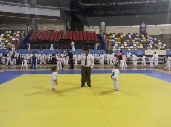 Kut'ül Ammare Zaferi'nin 100. yılı  Judo Turnuvası - MAVİ HALİÇ Gençlik ve Spor Kulübü Derneği | Mavi Haliç